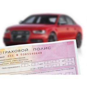 Президент одобрил реформу ОСАГО. Что ожидает автовладельцев Сибири