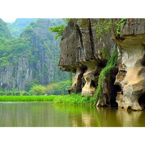 Зоологический музей: цикл прямых эфиров об исследованиях во Вьетнаме