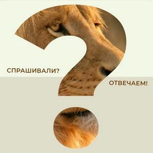 Зоологический музей МГУ: Шоу-программа «Спрашивали? Отвечаем!»