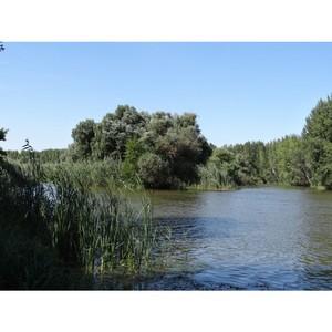 Фонд «Без рек как без рук» анонсировал исследование р. Волги