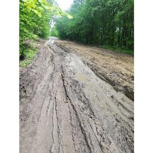 Активисты ОНФ в Мордовии добиваются ремонта дороги к селу Пянгелей