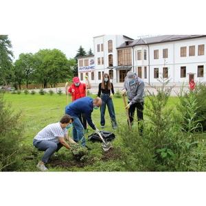 Активисты ОНФ в КБР в День эколога высадили кустарник в детском центре
