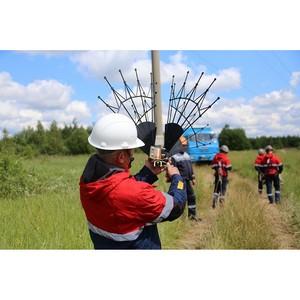 «Россети ФСК ЕЭС» установит птицезащиту на 7 ЛЭП Ярославской области