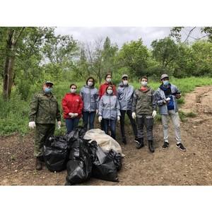 В День эколога ОНФ в Волгограде провел экочеллендж на берегу Волги