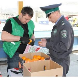 5 июня - День создания Государственной службы карантина растений в РФ