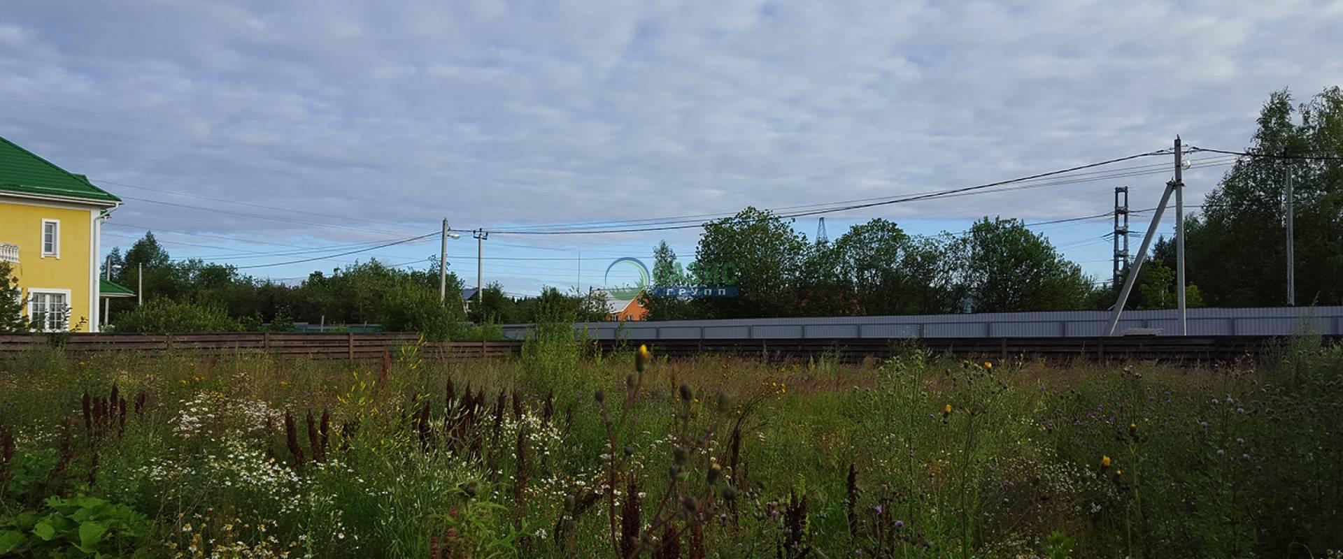 Работы по благоустройству и озеленению участка в Истринском районе