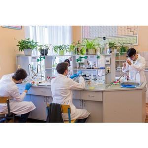 Школьники собрались на Международную Менделеевскую олимпиаду по химии