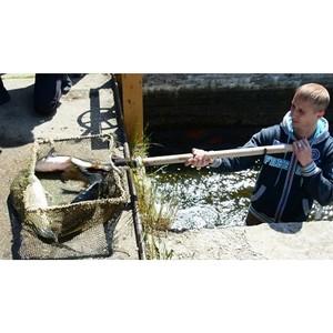 «Рыбный» день в Волгореченске Костромской области