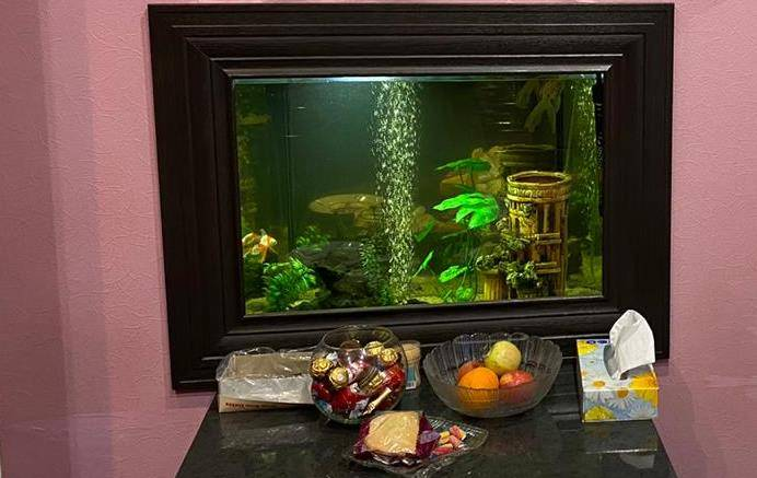 Аквариум на вашей кухне
