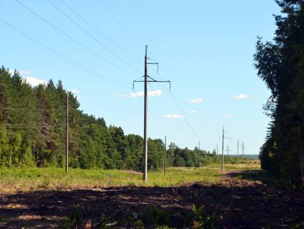 В Мариэнерго расчищают просеки воздушных линий электропередач