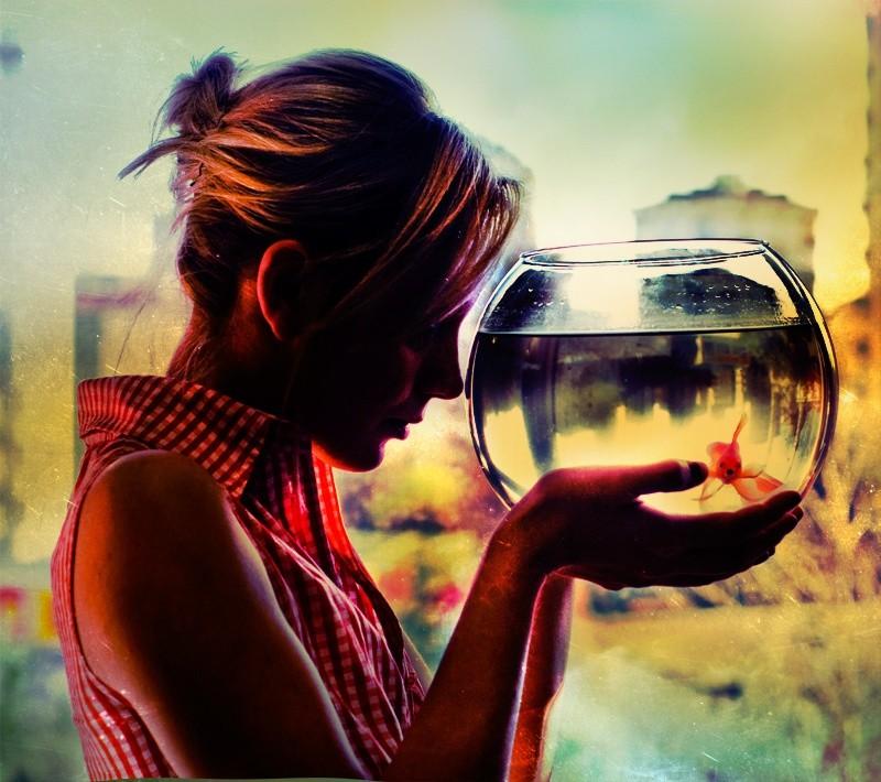 Голландские ученые доказали положительное влияние аквариума