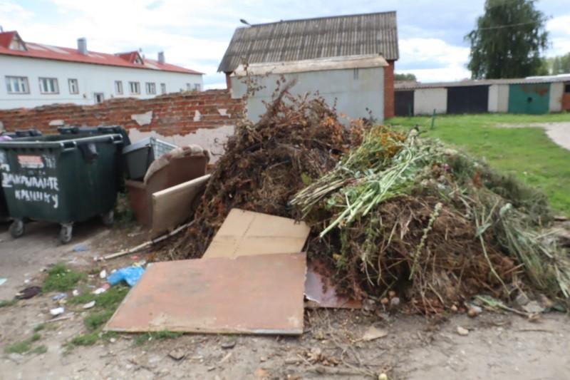 Активисты ОНФ в Мордовии добиваются ликвидации стихийных свалок