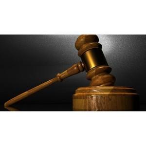 Волгоградцам нравится работа судов