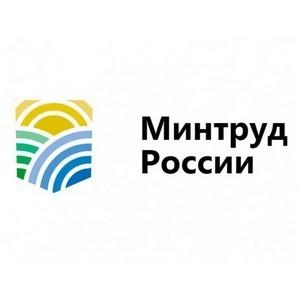 К программе создания временных рабочих мест присоединились 79 регионов