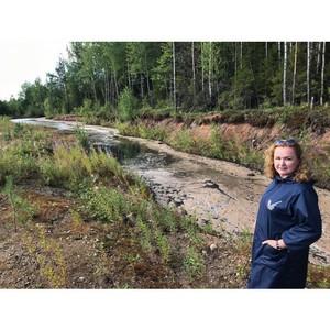 Коми ОНФ обнаружил токсичные отходы, которые якобы были ликвидированы