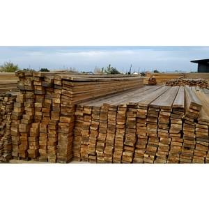 Новосибирская таможня предотвратила контрабанду ценных лесоматериалов