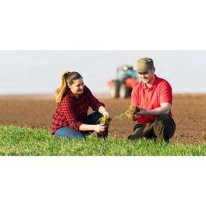 Для аграриев создали бесплатный рекрутинговый сервис