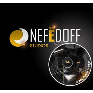 "Веб-студия ""Nefedoff Studios"" закончила портал для ""Impexmobile Int"