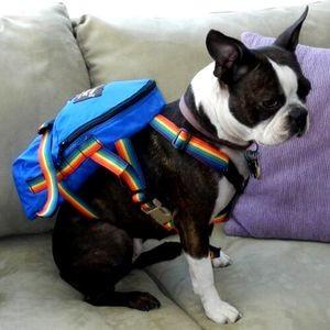 Найдено решение проблемы перевозки домашних животных в багаже