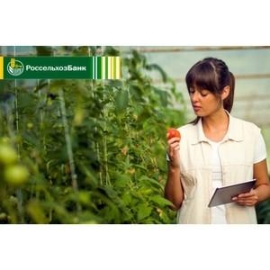 Результаты сотрудничества Агрокомплекса «Чурилово» с Россельхозбанком