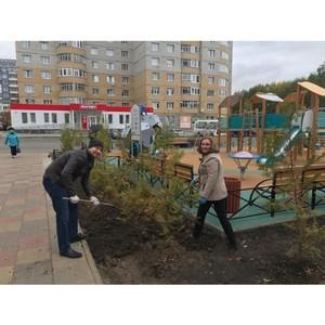 Активисты Коми ОНФ помогли озеленить территорию возле детской площадки