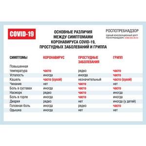 Роспотребнадзор: различия между симптомами ковида, гриппа и ОРЗ