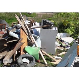 ОНФ в Коми призвал власти организовать своевременный вывоз мусора