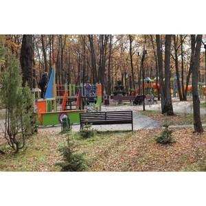 ОНФ призвал горожан бережнее относиться к новому парку в Саранске