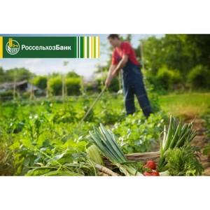 Россельхозбанк расширяет проект «Школа фермера» в 2021 году