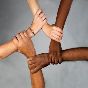 Толерантность или интернационализм?