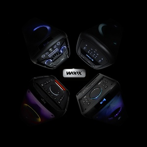 Стартовали продажи портативной музыкальной системы vipe Woox 300