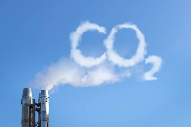 проект ПОЗ подразумевает высадку быстрорастущих деревьев Павловния вокруг тяжелых производств, чья деятельность сопровождается большим объемом выбросов вредных веществ и СО2 в атмосферу