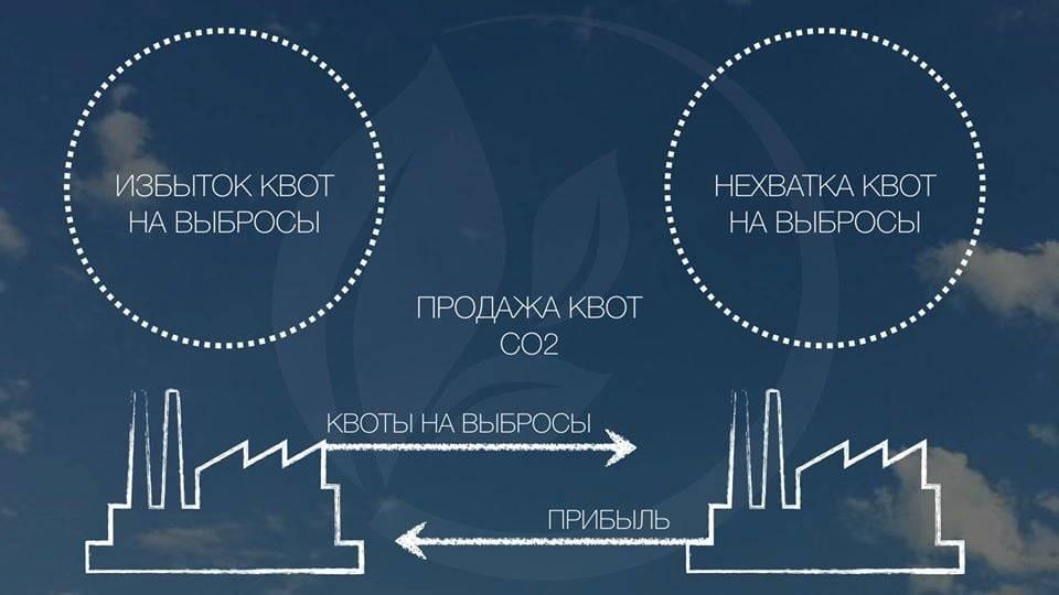 10 Га быстрорастущего леса – и более 250 тонн СО2 в год сможет поглощать «Природный Очистительный Завод».
