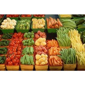 Россия увеличила физический экспорт продовольствия в Китай на 32%