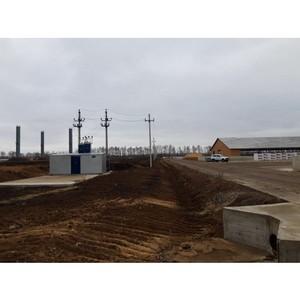 Воронежэнерго обеспечило мощностью животноводческий комплекс