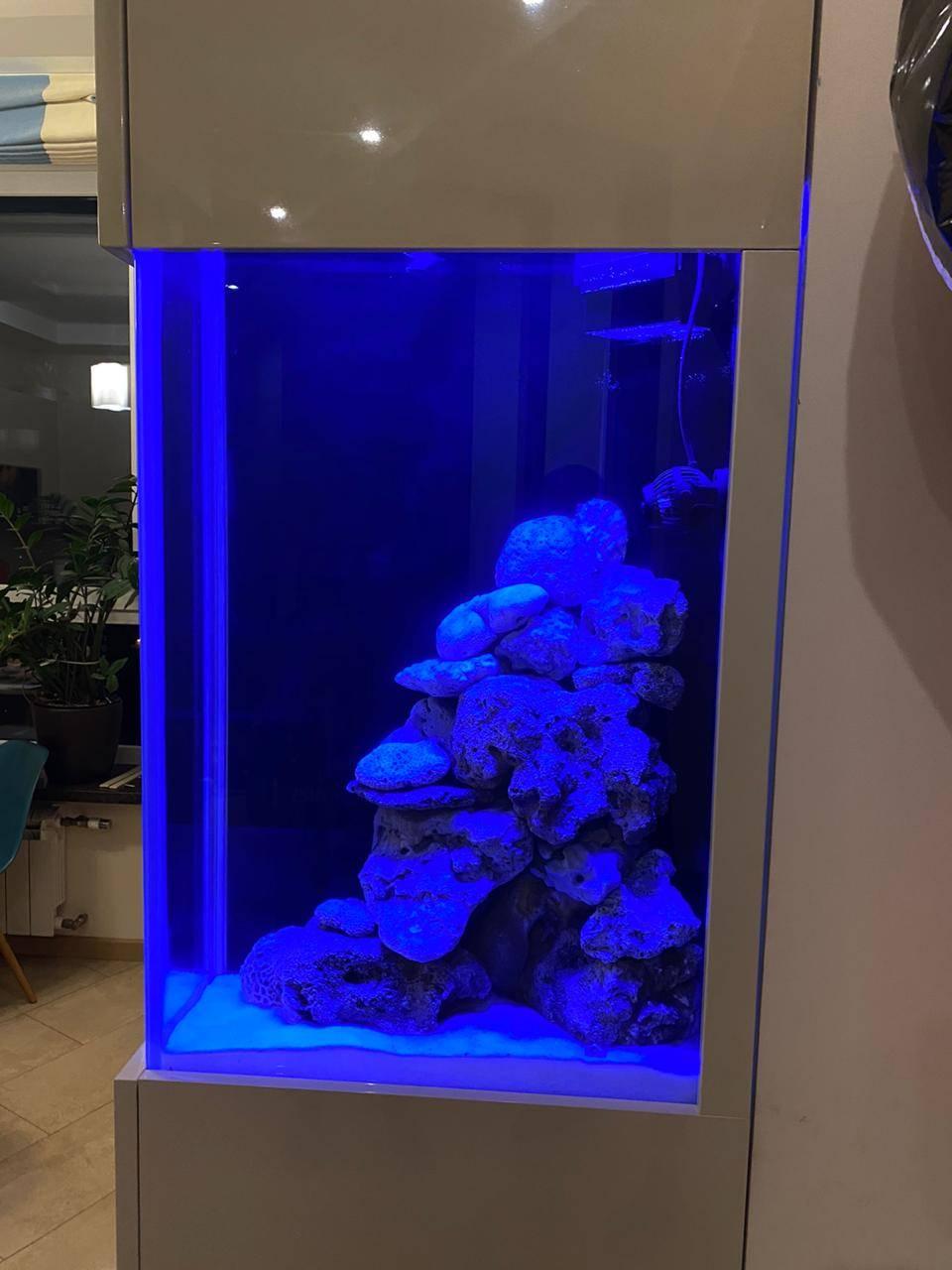 Монтаж морского аквариума