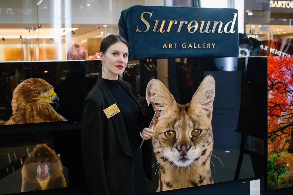 Стенд галереи Surround Art Gallery