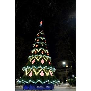 Главная елка Калуги с оригинальной световой иллюминацией