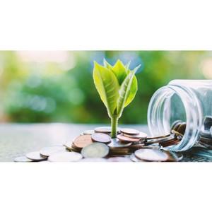 Зелёные финансы: инвестировать в борьбу с климатическими изменениями