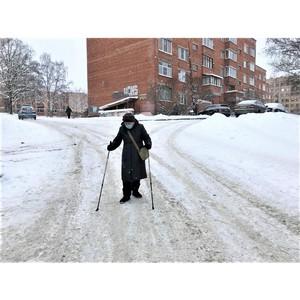 ОНФ призвал власти Петрозаводска оперативно убрать улицы от снега