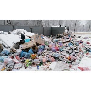 ОНФ: Контракты по вывозу мусора не заключены в 30 районах области
