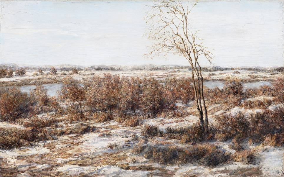 Иван_Похитонов_Повеяло_весной_1902_1906_Дерево_масло