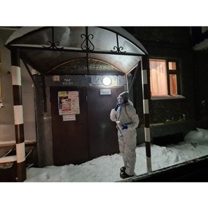 За время каникул волонтеры Камчатки выполнили около 300 заявок граждан