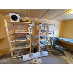 Компания «ПЛМ Урал» помогла создать приют для бездомных животных