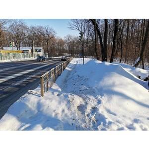 ОНФ обратил внимание мэрии Воронежа на проблемные тротуары в СХИ
