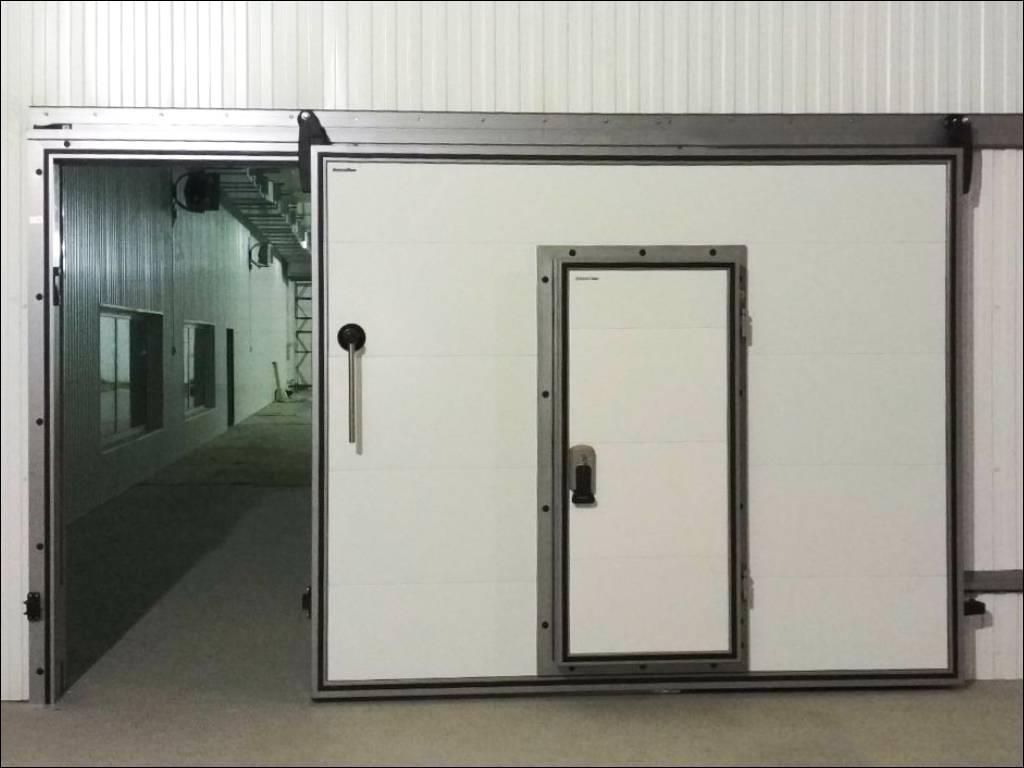 Откатная дверь со встроенной в полотно распашной дверью