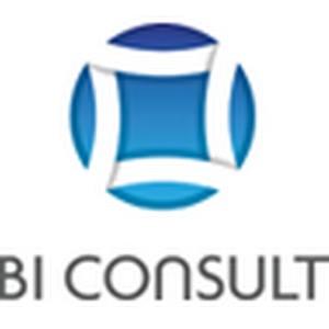 BI Consult завоевал высший партнёрский статус Qlik