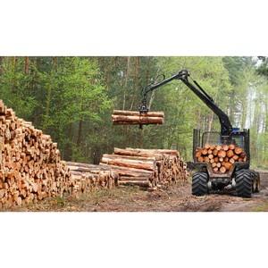 «Балтийский лизинг» предлагает леспрому оборудование по программе ФРП