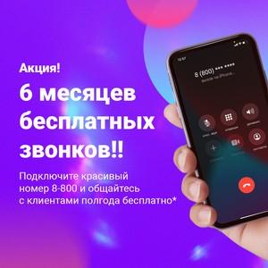 Полгода бесплатного общения с клиентами при подключении номера 8800