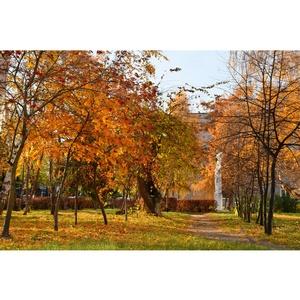 В ОмГПУ открылась выставка Art Vizit